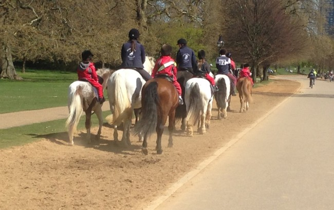 Hyde Park School goes Horse riding